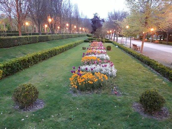 La taconera picture of parque de la taconera pamplona for Jardines de la taconera