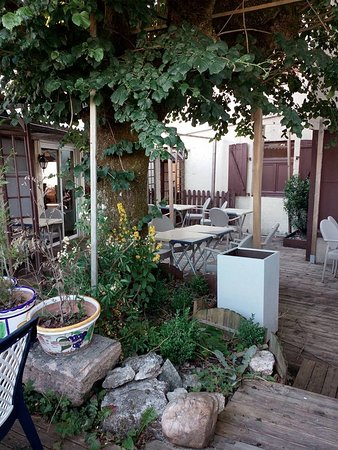 อีเกิลตันส์, ฝรั่งเศส: Terrasse ombragée et cosy