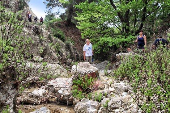 Αρχάγγελος, Ελλάδα: Beautiful, natural, surroundings.
