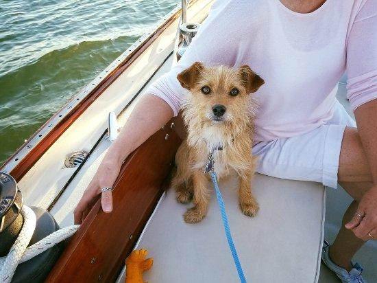 Westbrook, CT: First Mate #Scuppertheboatdog
