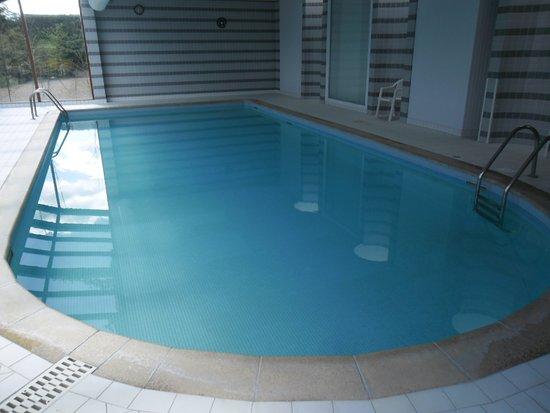 La piscine picture of logis luccotel loches tripadvisor for Piscine vallet