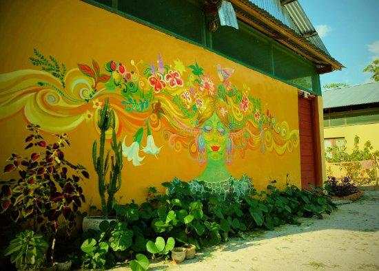 Caya Shobo Ayahuasca Healing Centre