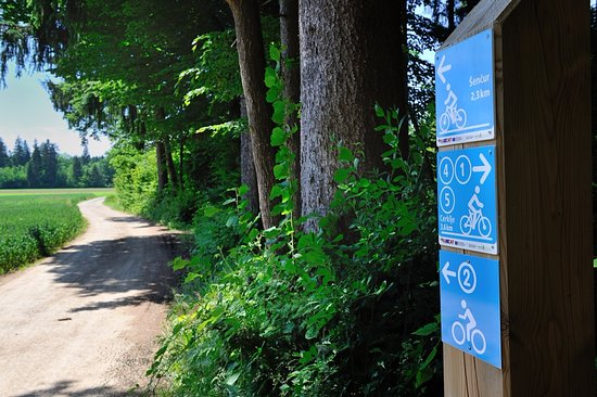 Hotel Silvester & Wellness: Cycling tracks in our area