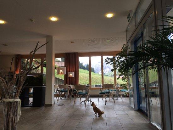 Hotel Alpina Adelboden Informationen Hotel Alpina Adelboden Scxhjdorg - Hotel alpina adelboden