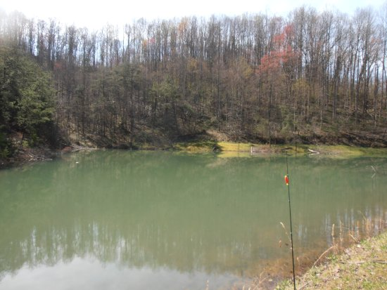 Ansted, Virginia Occidental: One of the fishing ponds