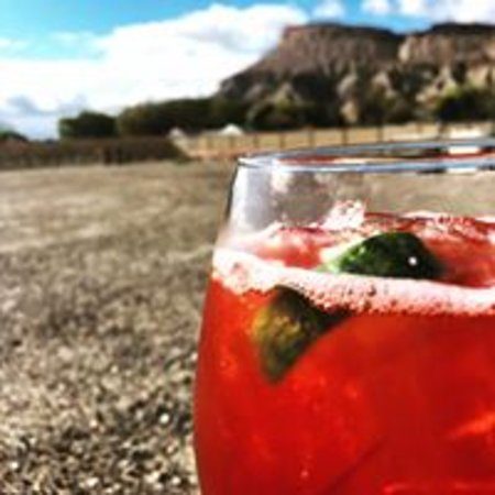 Palisade, CO: Cherry Limeade Cocktail on the patio with a nice view of Mount Garfield