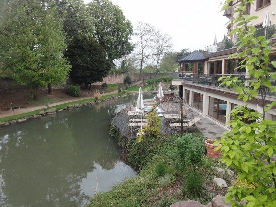 Jardin exterieur photo de hotel spa restaurant domaine for Piscine ensisheim