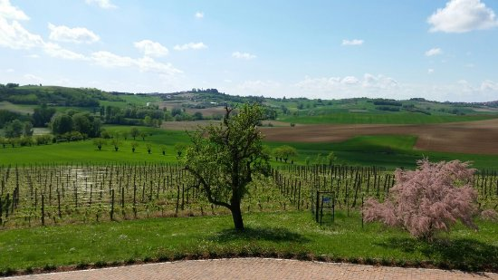 Montemagno, Italie : Vista mozzafiato