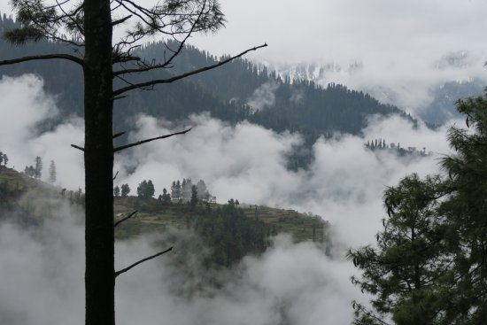 Shogran, Pakistan: View from Standard Room