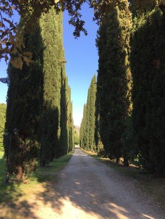 Casale Colleoni