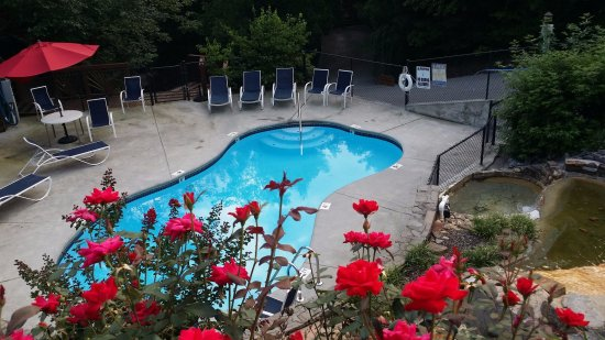 Mountain Shadows Log Home Resort: Seasonal Swimming - May thru September