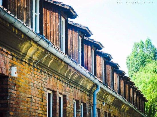 奥兹维辛集中营博物馆