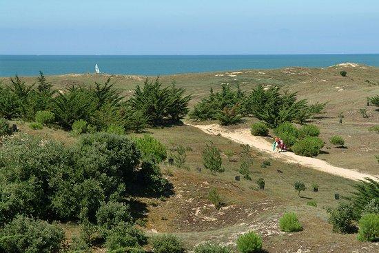 Camping La Parée du Jonc : Accès plage de la Parée du Jonc à pieds
