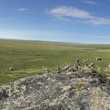 Kotzebue, AK: Tors and tundra