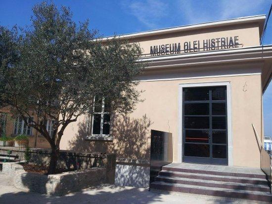 Museum Olei Histriae