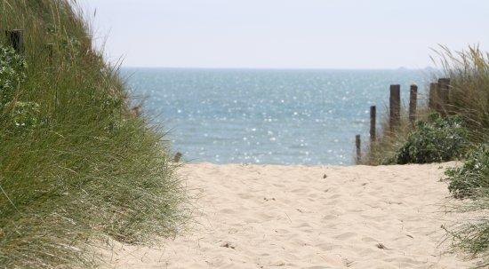 Camping Antioche: Accès direct plage - Le Bois Plage en Ré