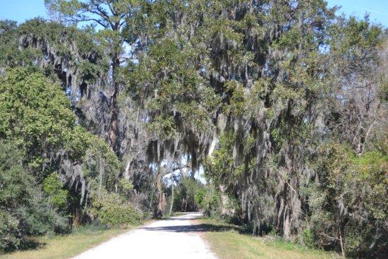 Hardeeville, SC: Scenic Wildlife Drive