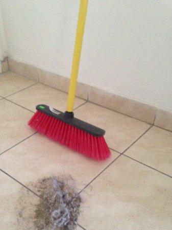 Debbie Xenia Hotel Apartments: Столько мусора было в день заезда-:((