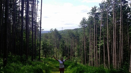 Huntingdon, Pensilvania: Our hiking trails on the 80-acre property