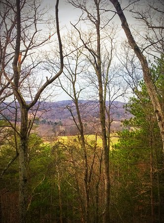 Huntingdon, Pensilvania: View at the top of Ridge Trail on our property