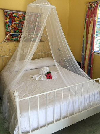 Cabarete Surfcamp: The bed