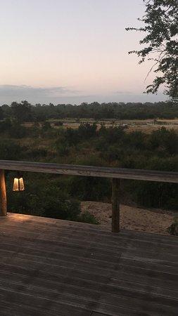 Simbambili Game Lodge: photo0.jpg