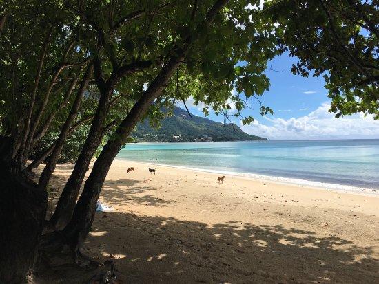 Bel Ombre, Seychellen: photo1.jpg