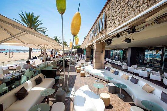 Opium restaurant barcelona ciutadella vila ol mpica - Chill out barcelona ...