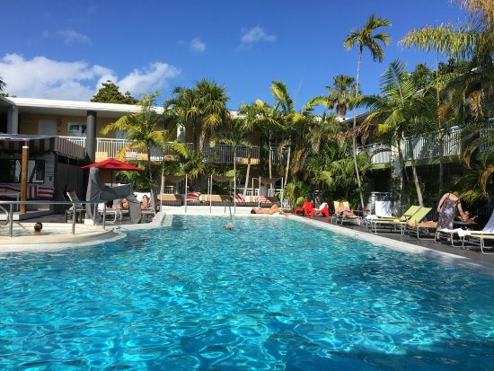 Best Western Hibiscus Motel: View from sun bed lounge