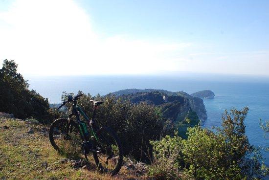 Pako Bike