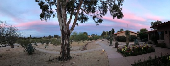 Wickenburg, AZ: Every time we leave Rancho De Los Caballeros I want to cry. It's seriously like heaven on earth.