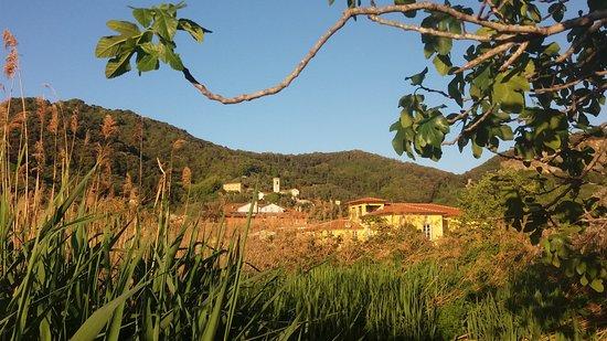 Oasi Massaciuccoli: La chiesa di San Lorenzo