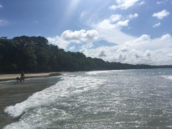 Изображение Congo Bongo Ecolodges Costa Rica