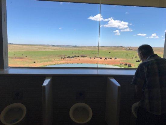 Middleburg, Южная Африка: Die interessanteste Toilette der Welt :-)