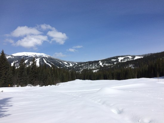 Sun Peaks, Canadá: View of ski hills from snow shoe trail