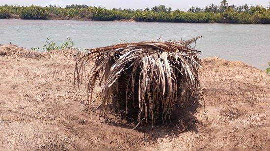 Mono River: aqui se filtra el agua salada