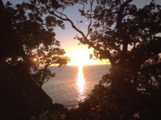 Royal Davui Island Resort: photo5.jpg