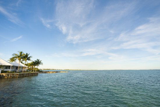 Abaco Beach Resort and Boat Harbour Marina: View from harbour