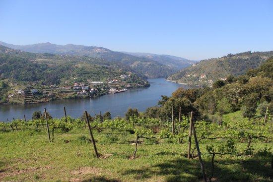 Santa Cruz do Douro照片