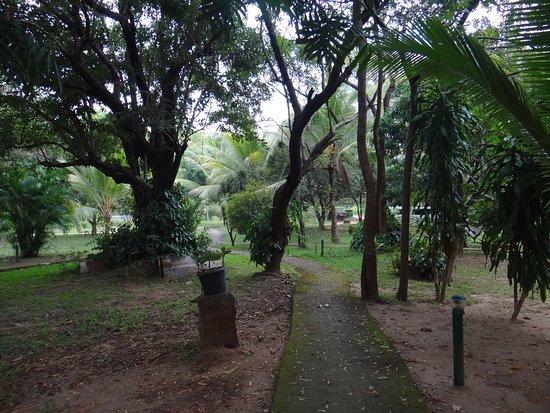 Sigiriya Cottage Photo