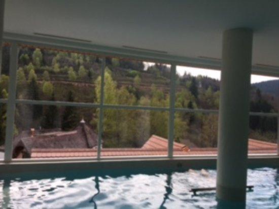 Hostellerie La Cheneaudiere - Relais & Chateaux: Bassin intérieur avec buses de massage