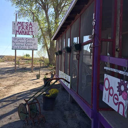 Mesa Farm Market in Caineville, Utah