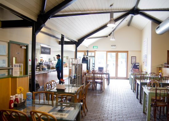 Hatched Cafe Review