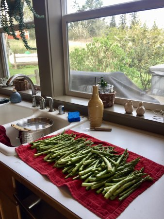 Lummi Island, WA: Fresh asparagus, part of an amazing dinner.