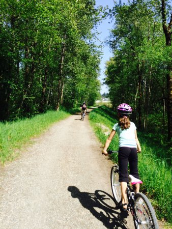 Port Coquitlam, Canada: Traboulay trail - great for cyclists of all ages