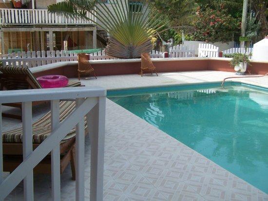 Pool - Picture of Caye Caulker Condos, Caye Caulker - Tripadvisor