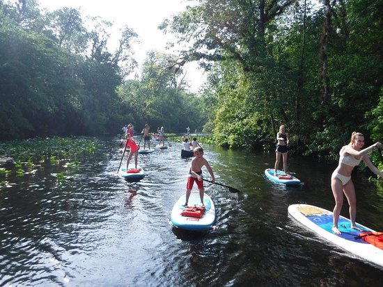 Paddleboard Orlando: A little upstream.