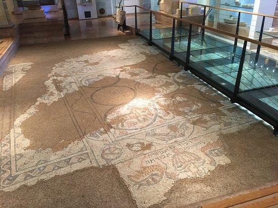 מוזיאון הכט, אוניברסיטת חיפה: photo3.jpg