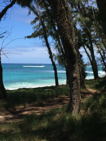 Kahuku, HI: View from the trail