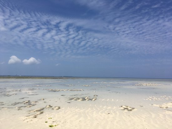 Flame Tree Cottages: Post breakfast walk along the beach